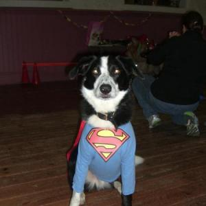 Superman - Charlie